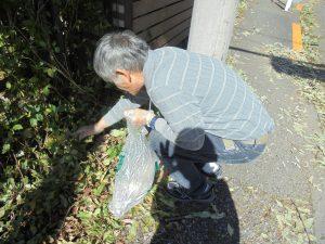 ゴミ拾い 地域 ボランティア 福祉施設