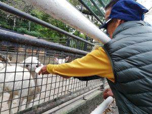 宇都宮動物園 福祉施設 旅行 ボランティア